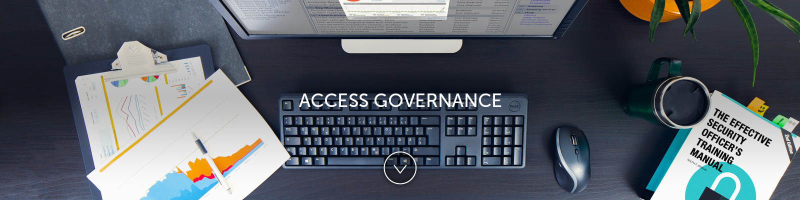 Access Governance (AG)